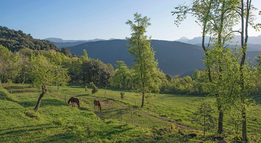 Som Rurals - SR-100 | Garrotxa