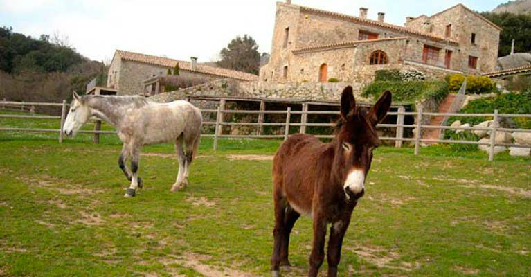Som Rurals - SR-341 | Alt Empordà