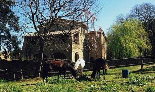 Som Rurals - SR-365 | Pla de l