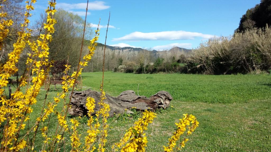 Som Rurals - SR-37 | Garrotxa