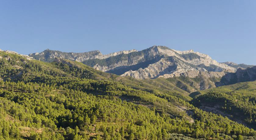 Som Rurals - SR-382 | Terra Alta
