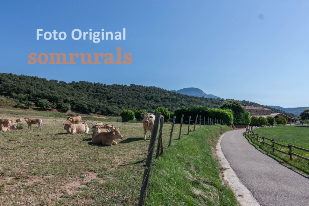 Som Rurals - SR-384 | Solsonès