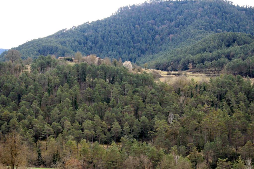 Som Rurals - SR - 408 | Osona