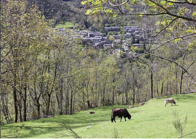 Som Rurals - SR - 438 | Ripollès