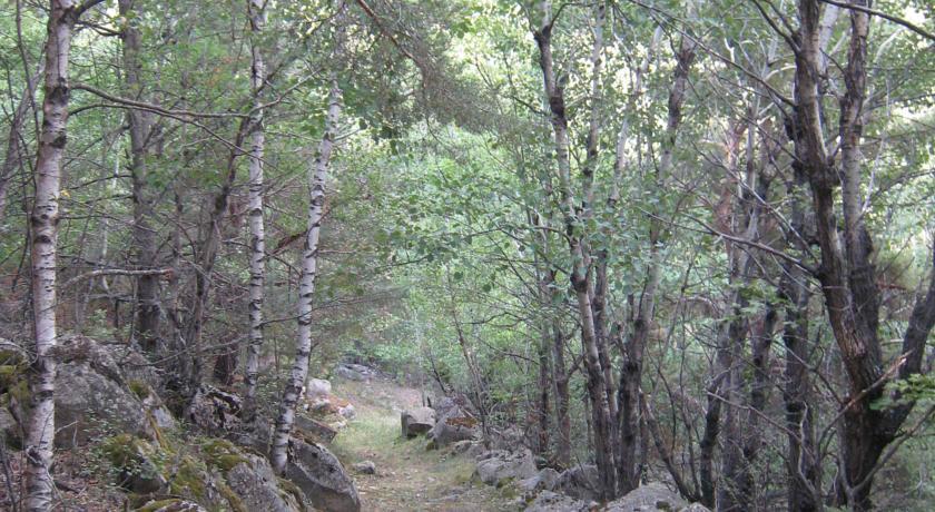 Som Rurals - SR - 448 | Cerdanya