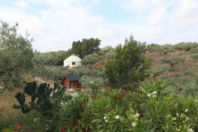 Som Rurals - SR - 454 | Baix Ebre