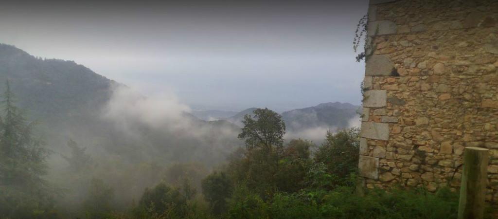Som Rurals - SR - 463 | Selva