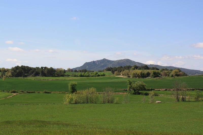 Som Rurals - SR - 504 | Conca de Barberà