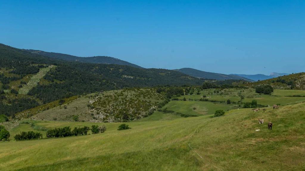 Som Rurals - SR-545 | Alt Urgell
