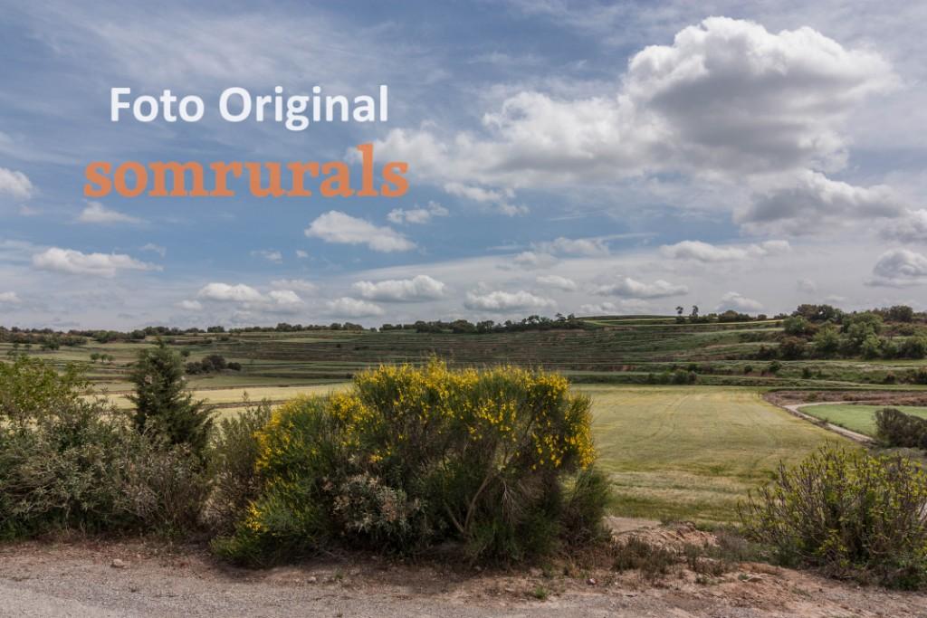 Som Rurals - SR-570 | Segarra