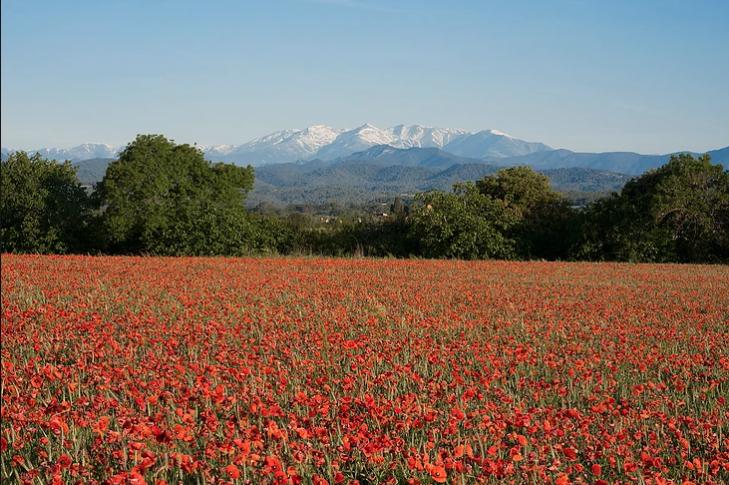 Som Rurals - SR-575 | Alt Empordà