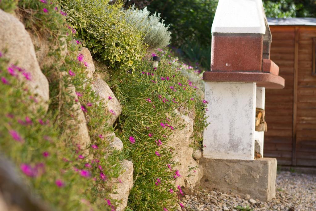 Som Rurals - SR-590 | Cerdanya