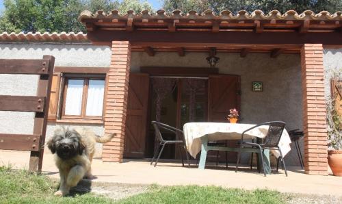 Som Rurals - SR-6 | Garrotxa