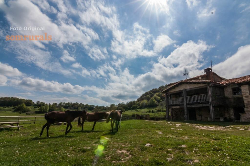 Som Rurals - SR-639 | Garrotxa