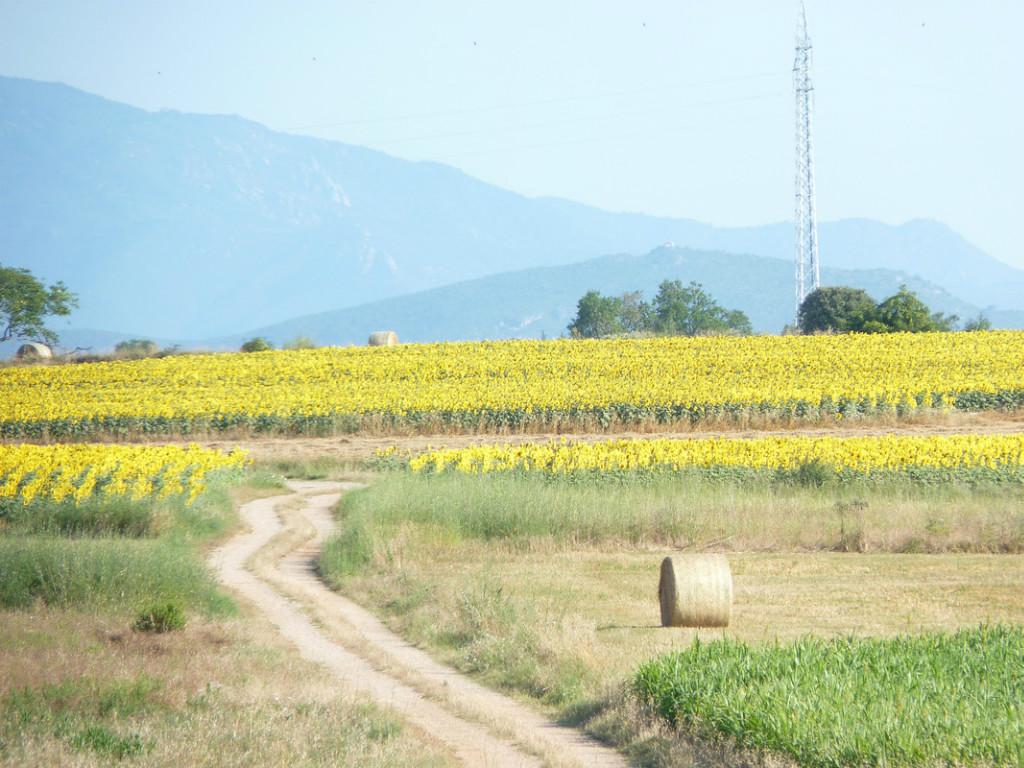 Som Rurals - SR-78 | Alt Empordà