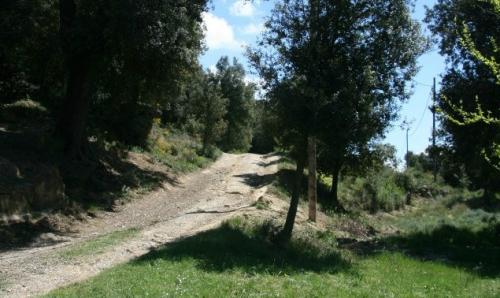 Som Rurals - SR-97 | Garrotxa